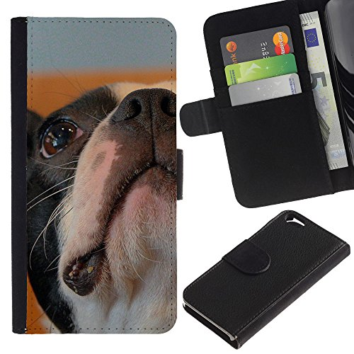 EuroCase - Apple Iphone 6 4.7 - Boston bulldog terrier French dog bull - Cuir PU Coverture Shell Armure Coque Coq Cas Etui Housse Case Cover