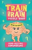 img - for Train Your Brain: Mind-Melting Conundrums (Train Your Brain Puzzle Books) book / textbook / text book