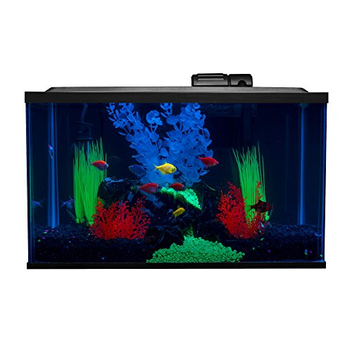 Glofish 10 Gallon Aquarium Fish Tank Kits, Includes LED Lighting and Décor (Amazon Exclusive)