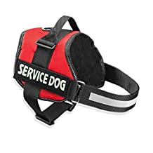 Cl Domino Service Dog Harness Security Dog Harness with Two Removbable Velcro Patches for Walking Training and Daily Use (Red, S)