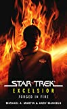 Download Star Trek: The Original Series: Excelsior: Forged in Fire in PDF ePUB Free Online