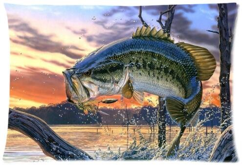Pillows Giant Fish (Adorable Pillow Cases Cushion Cover bass fish Pillowslip 20x30 inches Twin-sides Print)