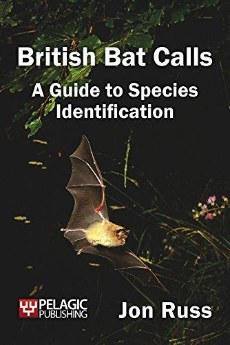 Species Bat (British Bat Calls: A Guide to Species Identification)