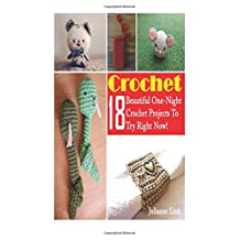Crochet: 18 Beautiful One-Night Crochet Projects To Try Right Now!: (Crochet Accessories, Crochet Patterns, Crochet Books, Easy Crocheting)