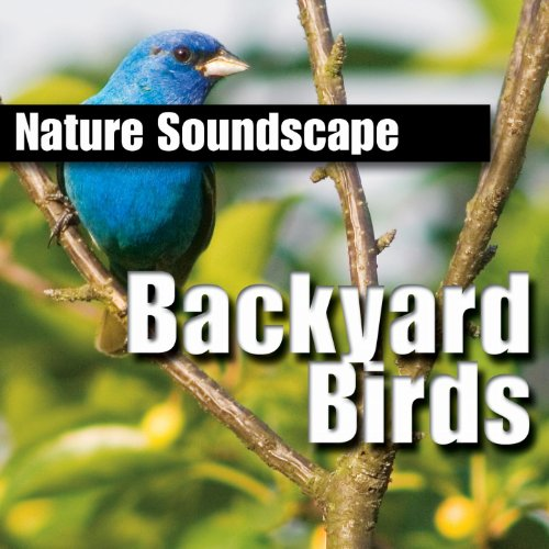 - Backyard Birds (Nature Sounds Only)