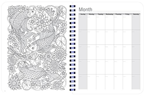 Undated Coloring Day Planner (8.5 x 11 inches) Large ...