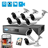 Best Vision 960P 8CH 1TB IP NVR Security Surveillance System + (8) 1.3MP PoE Outdoor Bullet Cameras
