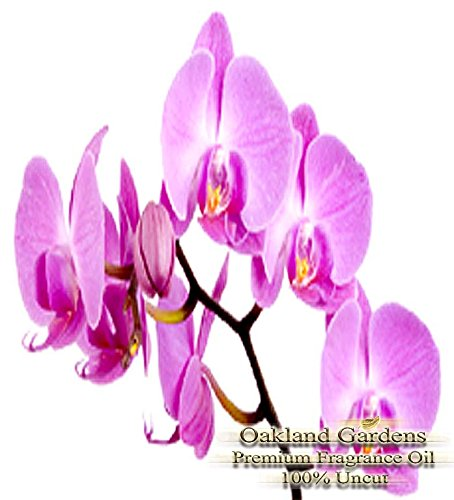 Orchid Fragrance Oil - 100% Pure Premium Grade Oil - UNCUT - Delicate, classy and sweet ! A heady, intoxicating fragrance like no other. Very exotic with notes of Ylang Ylang, Rose, Oriental Woods, and Jasmine - By Oakland Gardens - Delicate Orchid