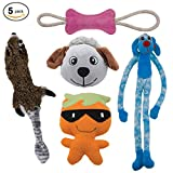 Dog Toys Value 5 Pack for Puppy, Small Dogs and Medium Dogs from Dawgeee, Squeaky Toy, Plush Toys, Rope Pet Toys, Dog Chew Toys
