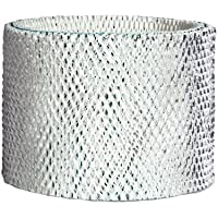 RPS PRODUCTS H62-2PK-PDQ-2 Holmes Wick/Air Filter, 2-Pk. - Quantity 1