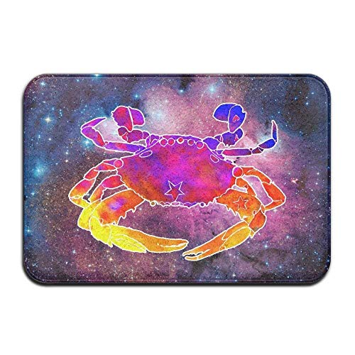 (Soft Non-Slip Watercolor Hermit Crab Bath Mat Coral Fleece Area Rug Door Mat Entrance Rug Floor Mats)