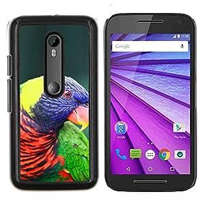 YiPhone /// Prima de resorte delgada de la cubierta del caso de Shell Armor - Loro colorido pájaro púrpura ornitología - Motorola MOTO G3 / Moto G (3nd Generation)