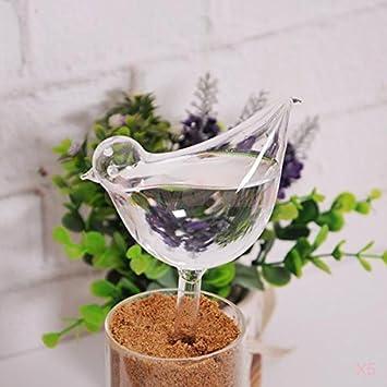 5 X Glas Pflanzen Wasser Blumen Wasser Anleger Selbst Bird Pflanze