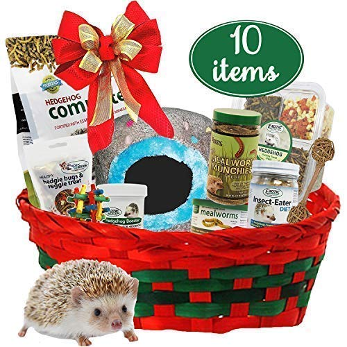 Exotic Nutrition Gift Set for Pet Hedgehog (10 Items)