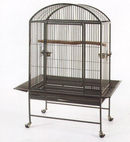 New Large Parrot Bird Wrought Iron Cage 28x20x60 Dome-Top *Black Vein*, My Pet Supplies