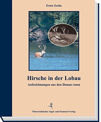 Hirsche in der Lobau: Aufzeichnungen aus den Donau-Auen