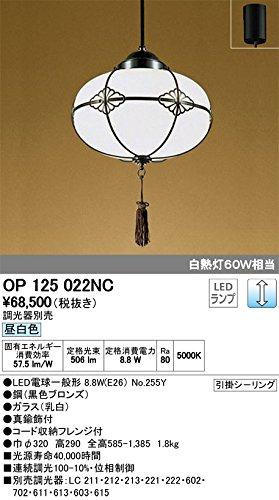 ODELIC オーデリック 和風LEDペンダントライト フレンジ 調光 調光器別売 ガラス 昼白色 OP125022NC B00L327KWK