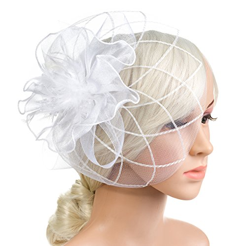 DancMolly 1920s Fascinator Derby Hats Feather Cocktail Tea Net Hair Headband Mesh Party Clip for Ladies Womens (Style 1-White) by DancMolly