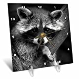 3dRose dc_173001_1 Baby Raccoon Black and White Digital Image-Desk Clock, 6 by 6-Inch For Sale