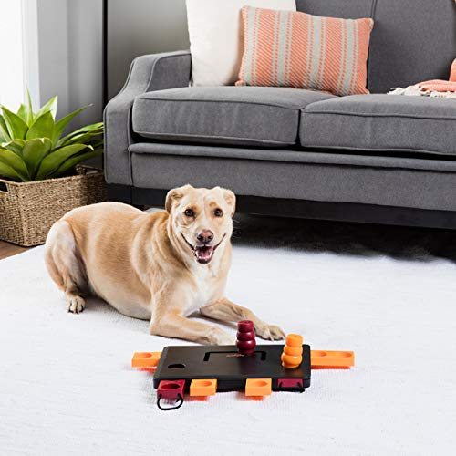 Move-2-Win Interactive Dog Toy Puzzle (Level 3) with slider knob