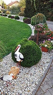 4myBaby GmbH Best for Garden - Piedra de río respetuosa con el Medio Ambiente, gravilla Virgen Natural bancales, Caminos y estanques de jardín, Grava Decorativa 10 kg - 500 kg a Elegir: Amazon.es: Jardín