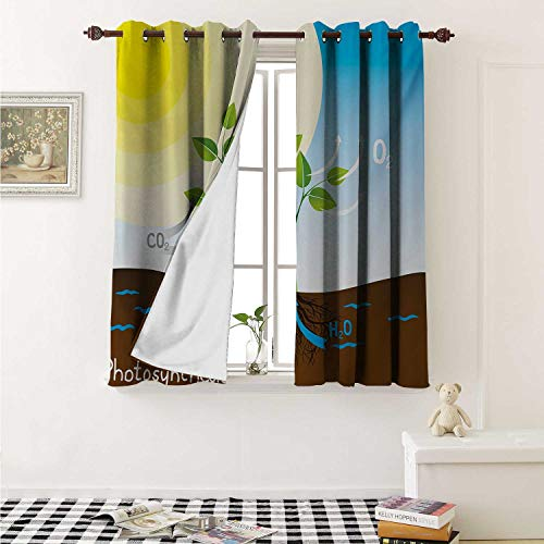 shenglv Educational Waterproof Window Curtain Simple Photosynthesis Scheme Plant Sun Molecules Chemical Chain Growth Ecology Curtains for Party Decoration W84 x L72 Inch Multicolor