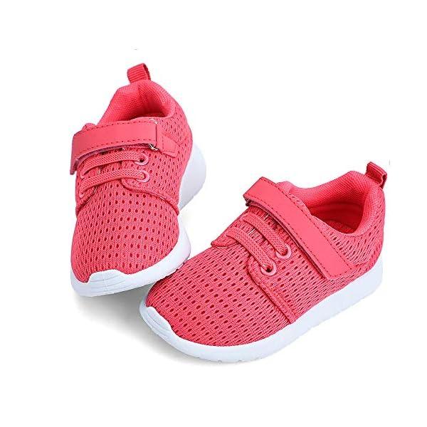 Toddler Shoes Boys Girls