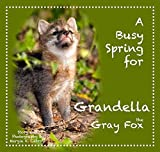 ''Nature Nurtures'' Story Book & Puppet Ensemble- A Busy Spring for Grandella the Fox- for Memory Care Activities and Caregivers