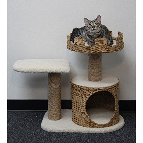 PetPal 3 Level Recycled Paper Made Cat Furniture, 31-Inch by 16-Inch by 27-Inch by PetPal