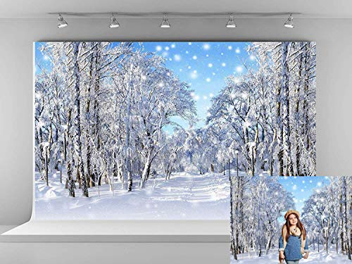 Kate 7x5ft Winter Wonderland Photography Backdrops Frozen Snow Backdrop Snowflake Photo Backgrounds Holiday Party Backdrops for Photographer -
