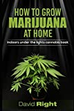 HOW TO GROW MARIJUANA AT HOME indoors under the lights cannabis book