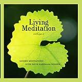 Living Meditation Vol. II - Guided Meditations With David Harshada Wagner