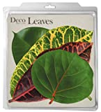 EuroQuest Imports Tropical Deco Parchment Leaves, Package of 20