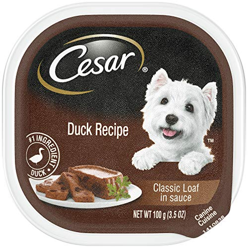 CESAR Wet Dog Food Classic Loaf in Sauce Duck Recipe, (24) 3.5 oz. Trays