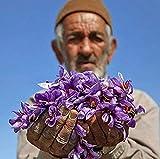 Zaran Saffron, Superior Saffron Threads
