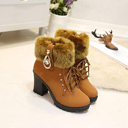 Plush Martin Heels Saihui Solid Boots Square Brown Shoes Women Winter Ladies Warm New 8x44HwUTqS