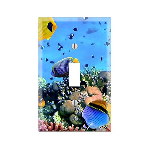 FISH Light Switch Cover, FISH Graphics Wallplate, Outlet Cover, Single Toggle, Single Rocker, Outlet Cover, Gift for FISH Lover, FISH Room Decor, TROPICAL FISH Wall Plate Cover, Under The Sea TF113