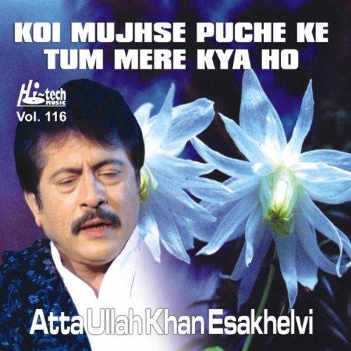 Koi Puche Mere Dil Full Mp3 Song Download: Tum Bhool Gaye By Atta Ullah Khan Esakhelvi On Amazon