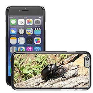 """Hot Style Cell Phone PC Hard Case Cover // M00308865 Insects Beetle Forest Nature // Apple iPhone 6 4.7"""""""