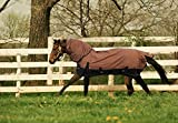 TURNOUT 1680D HORSE WINTER WATERPROOF With NECK COVER - HORSE BLANKET 003 - Size from 69'' to 83'' (75'')