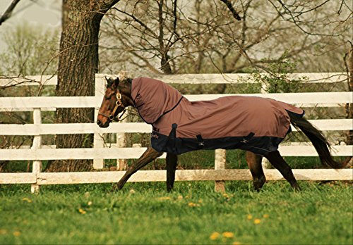 TURNOUT 1680D HORSE WINTER WATERPROOF With NECK COVER - HORSE BLANKET 003 - Size from 69'' to 83'' (75'') by WPIC