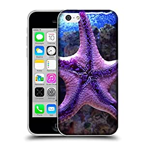 Super Galaxy Coque de Protection TPU Silicone Case pour // V00000261 Estrella de mar // Apple iPhone 5C