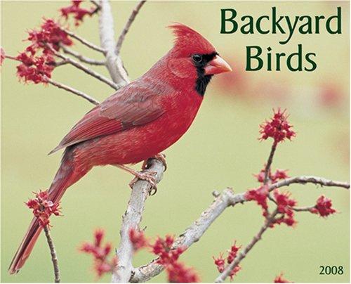 (Backyard Birds 2008 Calendar)