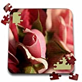 3dRose TDSwhite – Summer Seasonal Nature Photos - Floral Pretty Pink Flowers - 10x10 Inch Puzzle (pzl_284507_2)