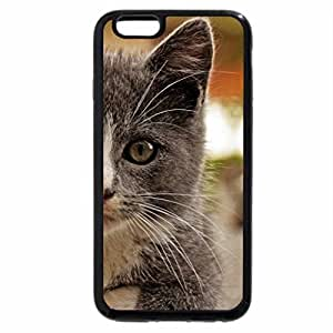 iPhone 6S Plus Case, iPhone 6 Plus Case, Deep gray eyes