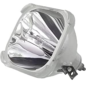 Electrified 6912V00006C Replacement Bulb Only for Zenith Products