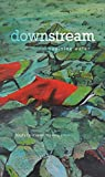 img - for downstream: reimagining water (Environmental Humanities) book / textbook / text book