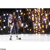 Square Enix (SQUARE ENIX) KINGDOM HEARTS III BRING ARTS sky painted action figure