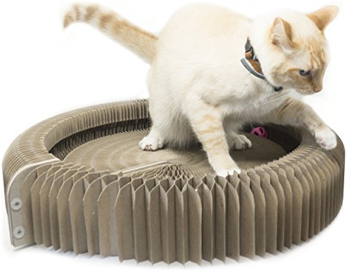 Cat Turbo Scratcher For Indoor Cats Toys Cat Corner Scratcher Play Cat Toys Cat Furniture and Scratchers