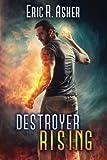 Destroyer Rising (Vesik) (Volume 5)